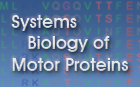 Motorprotein.de